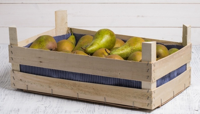 Как хранить груши в домашних условиях правильно в зимний период