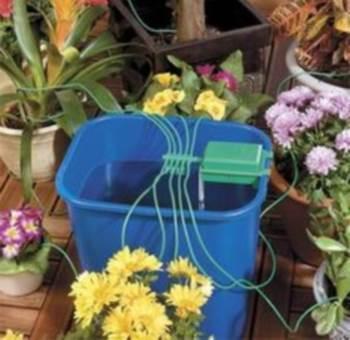 Автополив для цветов – как спасти растения от высыхания за время отпуска?