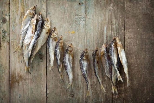 Как хранить вяленую и сушеную рыбу в домашних условиях