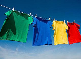 Как избавиться от бельевых вшей в домашних условиях: промышленные и народные методы