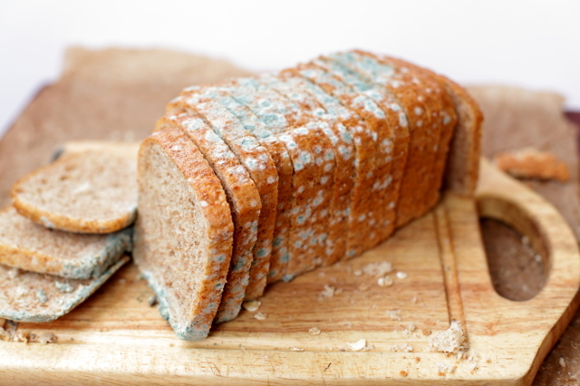 Можно ли хранить хлеб в холодильнике и морозильной камере, сколько можно держать его в холоде