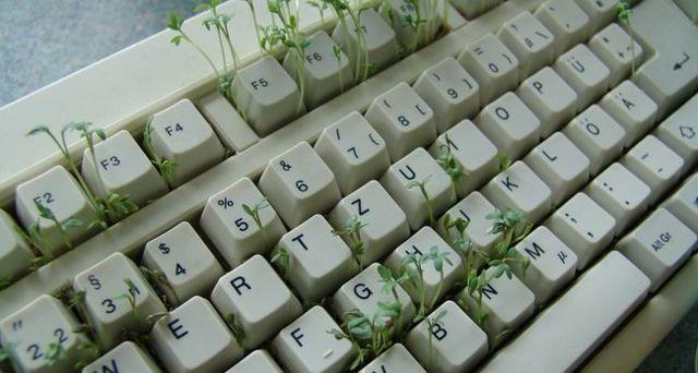 Можно ли чистить клавиатуру обычным пылесосом или спиртом: риски для ноутбука и обычной клавиатуры